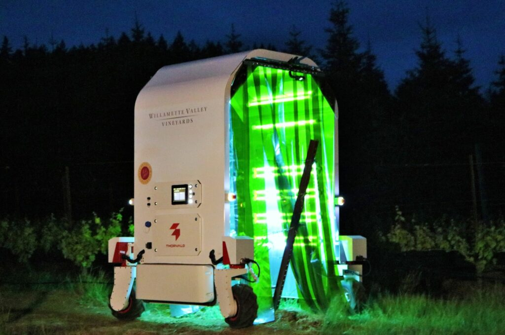 UV-C Light Robot enters row of vines
