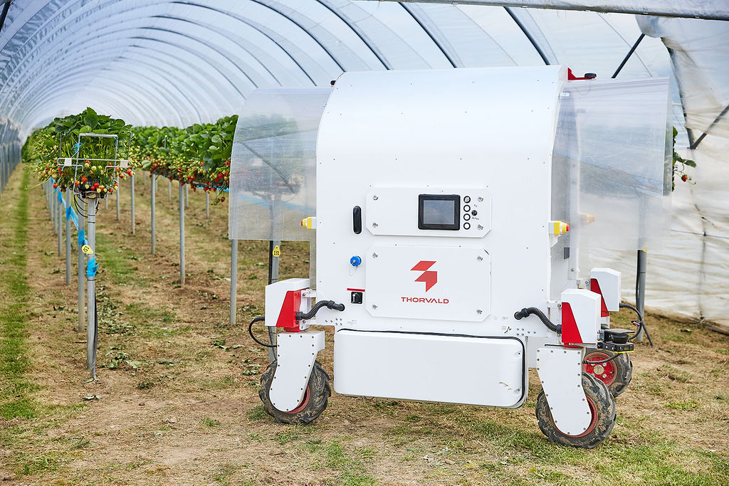 Thorvald agricultural robot
