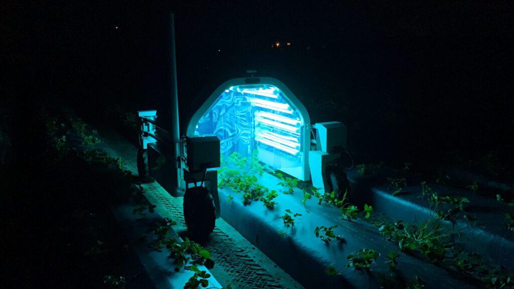 UV Light Treatment in Open Fields